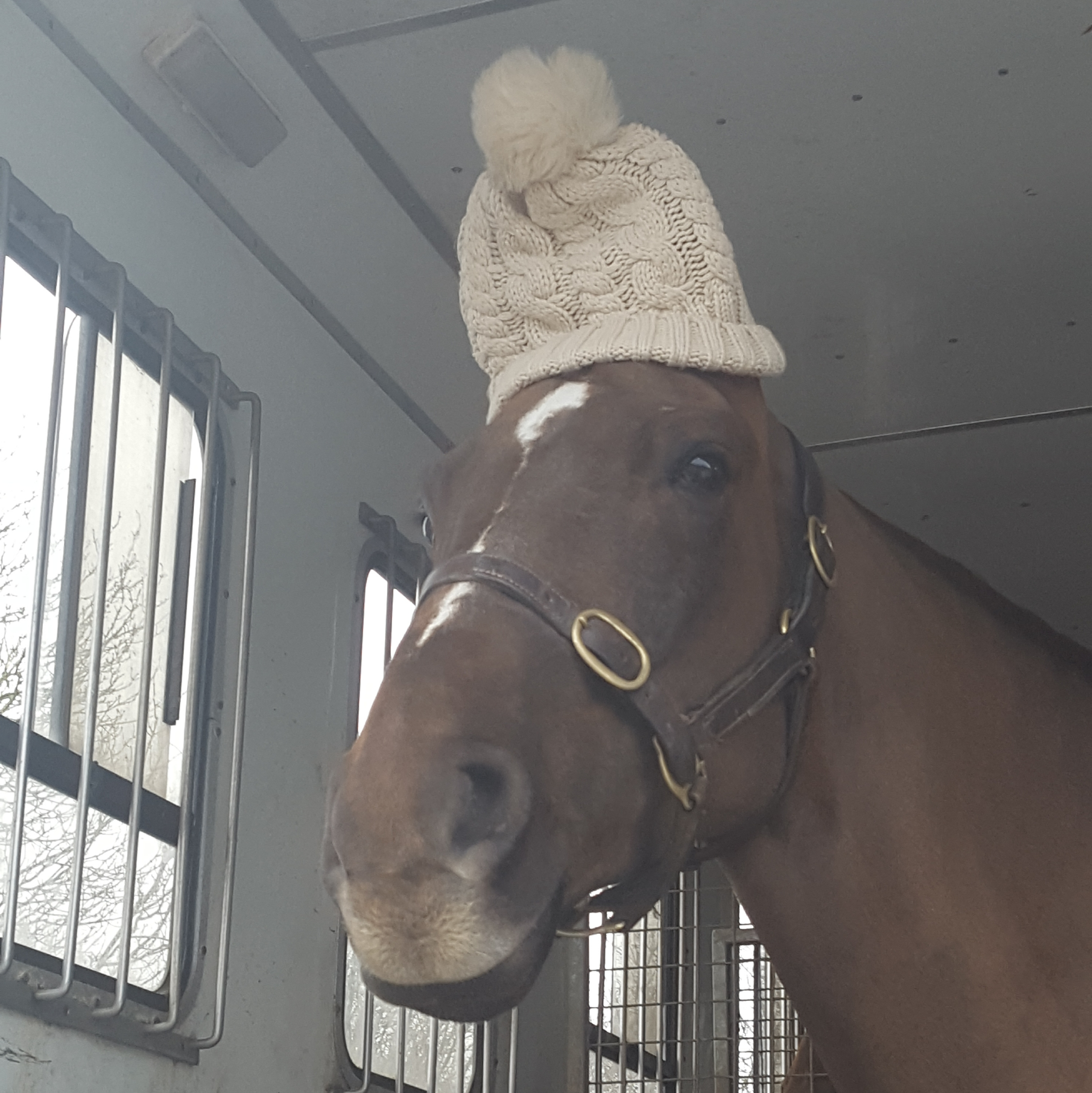 Ludo and his woolly hat!